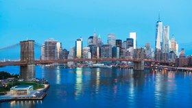 New York zaplavují hlodavci! Město mají ochránit kočičí hlídky