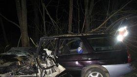 Neunesl rozchod a chtěl se zabít v autě: Opilý a bez řidičáku vrazil přímo do stromu