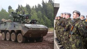 Česko po letech vyzkouší mobilizaci. Zapojí se aktivní zálohy