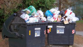 Pokládáte odpadky u přecpané popelnice na zem? Pokuta až 50 tisíc, hrozí magistrát
