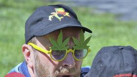 """""""Konopné rostliny do každé rodiny."""" Lidé pochodovali za legální marihuanu"""