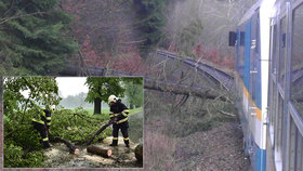 """Osobní vlak narazil na Hodonínsku do stromu, který """"podťala"""" bouřka! Hasiči museli zachránit 27 lidí"""