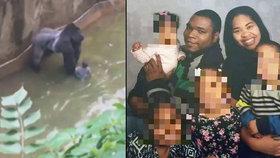 Babička kluka, který spadl do výběhu v zoo: Gorilu nemuseli zastřelit!