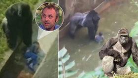Zastřelení goriláka Harambeho bylo správné, myslí si muž, kterého před 30 lety zachránil primát