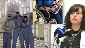 Zaměstnávejte vězně či postižené, vyzývá ministerstvo. Firmy láká na 100 milionů