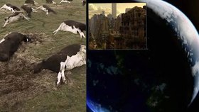 Děsivý scénář apokalypsy: Co by se stalo s naší planetou, kdyby lidstvo vymřelo?