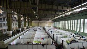 Uprchlíci zmizí z berlínského letiště Tempelhof. Čeká je lepší bydlení