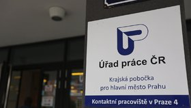 V Česku je bez práce 230 tisíc lidí. Firmám přesto chybí dělníci a zdravotníci