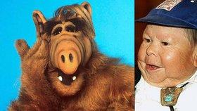 Alf bojuje o život! Herce (84 cm) našli v bezvědomí ležet v koupelně