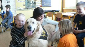 """Pes dlouhou rehabilitaci zkrátí na minuty. Expert popsal pomoc """"chlupáčů"""""""