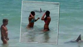Mladík se převlékl za žraloka a děsil lidi v moři i na pláži!