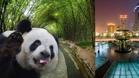 Čínské Čcheng-tu je víc než jen pandy! Pravěké obětiště a show, při které nevěříte svým očím