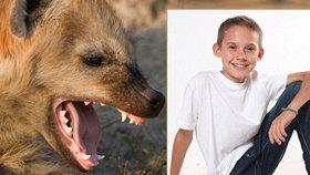 Spícího chlapce (15) vytáhla hyena za obličej ze stanu, potrhala mu svaly a zlámala kosti
