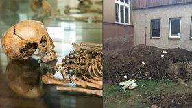 Děsivý nález: Na dvoře základní školy ve Zbraslavi našli dělníci kostru člověka