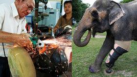 Doktor dělá protézy slonům, kterým miny utrhly nohy. Musí unést 600 kilo živé váhy