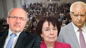 """Workoholici a """"sběratelé"""" funkcí. Kdo si mimo parlament nejvíc přivydělává?"""