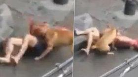 Polonahého muže potrhal pitbul, zachránci se rozzuřené zvíře snažili zahnat tyčemi