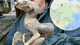 Příšera z hlubin: V dole na Sibiři našli mumii neznámého tvora