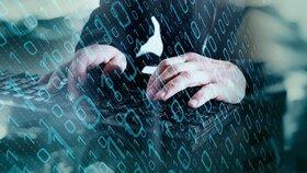 Hackeři napadli rakouský parlament. K útoku se přihlásili islamisté