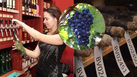 Jak poznat kvalitní a nekvalitní víno? To vám povíme.