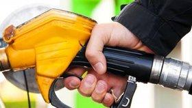 Nafta i benzin zlevnily. Na pumpě nejvíc ušetříte na Pardubicku