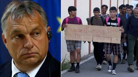 Za pomoc migrantům trest, přitvrzují Maďaři. Vězení má čekat i lidi od Sorose