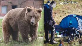 Drama na Slovensku: Dva české turisty napadl v Tatrách medvěd!