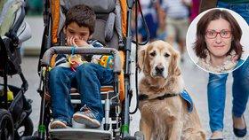 Bude na výcvik asistenčních psů dohlížet úřad? Odbornice volá po kontrole