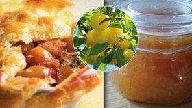 Co takhle zkusit mirabelky nebo špendlíky? Máme pro vás prvotřídní recepty!