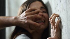 V Toužimi měl mladík znásilnit dívku (16): Vylákal ji z diskotéky