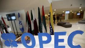 Benzin a nafta můžou zdražit až o čtyři koruny, OPEC bude těžit méně ropy