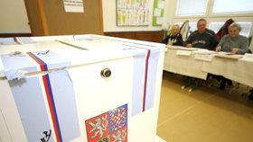 Volby jsou diskriminační, tvrdí Gabal. Budou Češi volit korespondenčně a elektronicky?