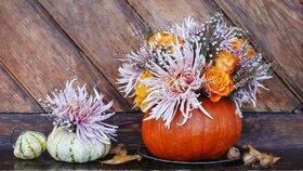 Krok za krokem: Vyrobte si nádherné podzimní aranžmá z dýně