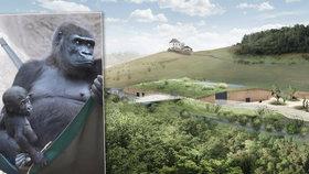 Skvělá zpráva pro Zoo Praha: Gorilinec od ministerstva kultury dostal zelenou