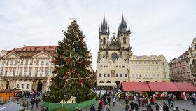 Zpoždění vánočních trhů na Staromáku: Se stromem to letos bude jinak