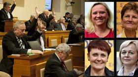 Ženská síla v Senátu: Do lavic zasedne rekordní počet žen. Které přibyly?