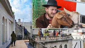 Kobza staví na střeše Lucerny komunitní zahradu: Lidem ji otevře až v roce 2018