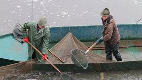 Na Farském rybníčku v Modřanech budou rybářské závody pro mladé: Úlovky vrátí do vody