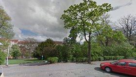 Rozhodněte o parku na Vinohradech: Radnice přes web zjišťuje, co chcete změnit či zachovat