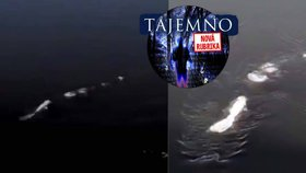 4,5metrové monstrum natočili na Aljašce: Plavil se v řece prehistorický had?