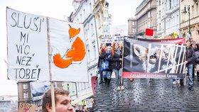 Konec plynových komor, volaly stovky aktivistů. Zakažte kožešinové farmy