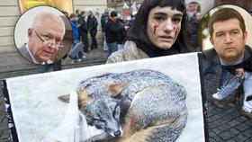 52fc316b46a Politici vs. zabíjení zvířat pro kožichy  Kdo chce zákaz a kdo je teď  spokojený