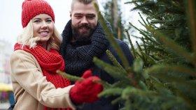 Jaký koupit stojan na vánoční stromeček? Záleží na velikosti i druhu stromku
