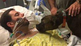 Dojemné loučení: Věrný pes dal poslední sbohem svému umírajícímu páníčkovi