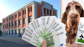Zubní pasta pro psy za 65 milionů: Institut spolkl dotaci z EU a je před krachem