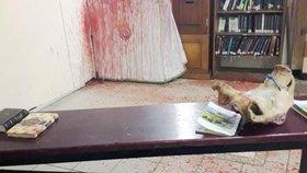 Prasečí hlava, falešná krev a hákový kříž. Na Ukrajině znesvětili hrob rabiho
