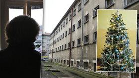 Odsouzený vrah popsal Vánoce ve vězení: Pláč drsňáků, řízek a balíček ovoce