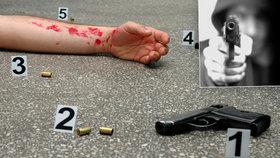 Sedmnáctiletá školačka zemřela při střelbě na americké škole. Policie neví, jestli to byla náhoda, nebo vražda