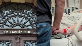 Milada (†30) zemřela po porodu: Pozůstalí mají novou naději na odškodnění