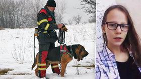 Míšu mohl od začátku hledat český speciálně vycvičený pes: Policie ho ale odmítla